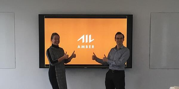 Itility's testpanel for Amber