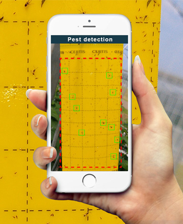 pest detection download featured