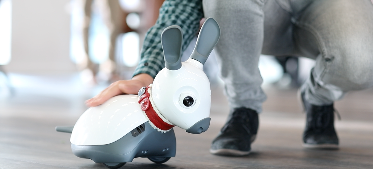 petting-robodog_Blog-Header